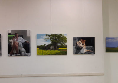 Ausstellung-Krems-Kultur-Mitte-08