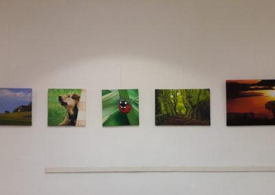 Ausstellung-Krems-Kultur-Mitte-09
